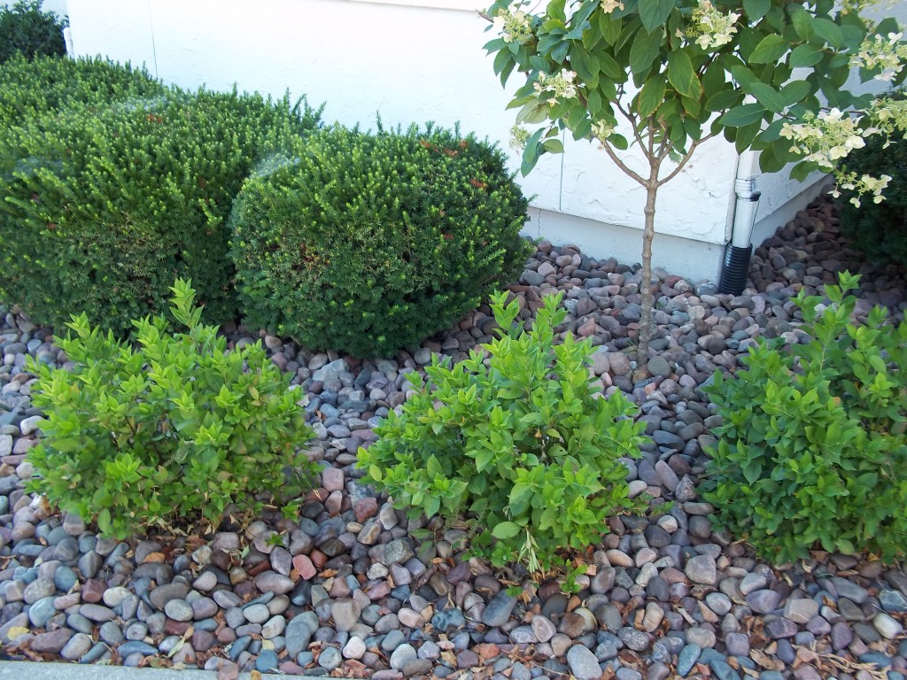 Landscaping With Mulch And Stone : River rocks riverview stone llc
