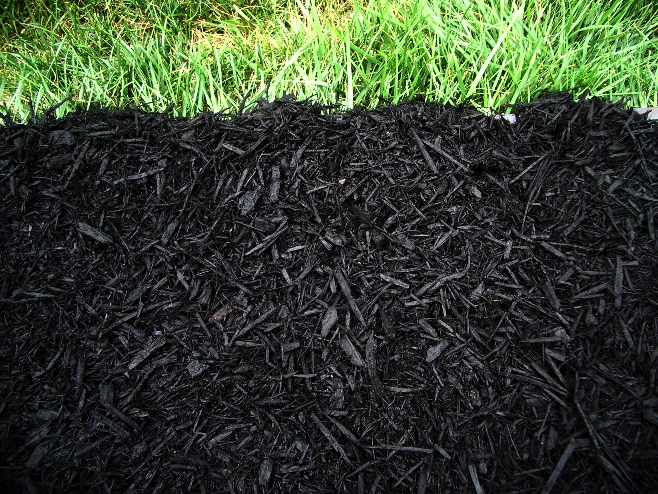 Perfect Black Mulch 2304 x 1728 · 3422 kB · jpeg