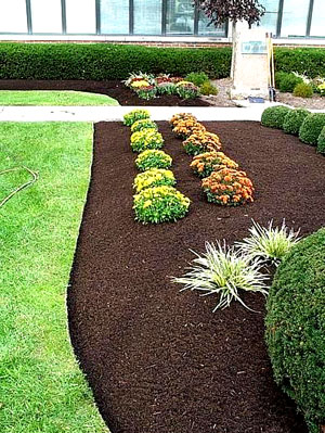 Java brown mulch riverview stone llc for Landscaping rocks kansas city mo